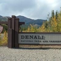 DSB 0791 Alaska Denali Nationalpark Denali Nationalpark USA