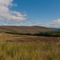 DSH 9211 Irland Wicklow Mountains National Park