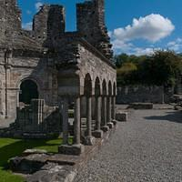 DSH 9833 Irland Melifont Abbey
