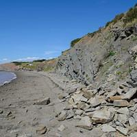 DSK 7211 Kanada Bay of Fundy Eastcoast Joggins Fossil Cliffs Nova Scotia Ostkueste