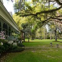 DSM 7026 USA Louisiana Irish Moos St. Francisville Plantage Plantation The Myrtles Plantation