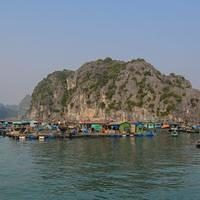 DSL 2965 Vietnam Cat Ba Floating Fishing Village Halong Bucht Schwimmendes Dorf