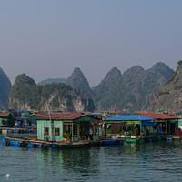 DSL 2974 Vietnam Cat Ba Floating Fishing Village Halong Bucht Schwimmendes Dorf